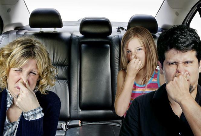 Bảo vệ không gian bên trong của xe luôn được mới và sạch